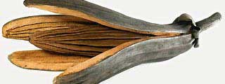 sculpture graine