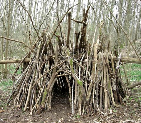 cabane cahute arbre