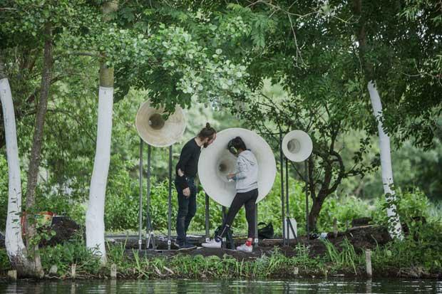 Jardins : Festival des Hortillonnages d'Amiens