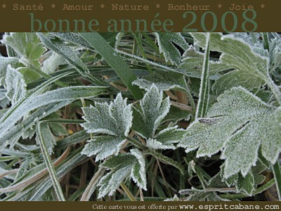 Belle (et verte) année