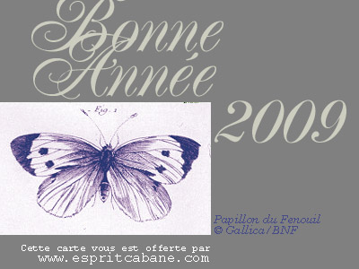 Cartes de voeux 2009 esprit cabane idees creatives et for Au jardin de tadine cartes virtuelles