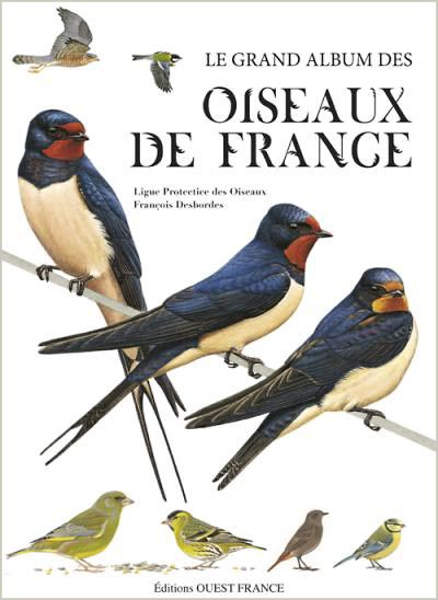 le grand album des oiseaux de france esprit cabane idees creatives et ecologiques. Black Bedroom Furniture Sets. Home Design Ideas