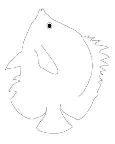 dessin poisson papillon