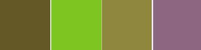 Id es de couleurs esprit cabane idees creatives et ecologiques - Quelle couleur avec du vert anis ...
