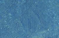 detail patine bleu charron