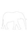 motif éléphant