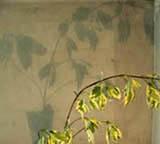 déco murale ombre