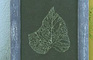 détail feuilles deco