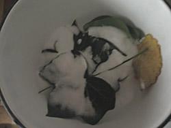 recette feuilles deco